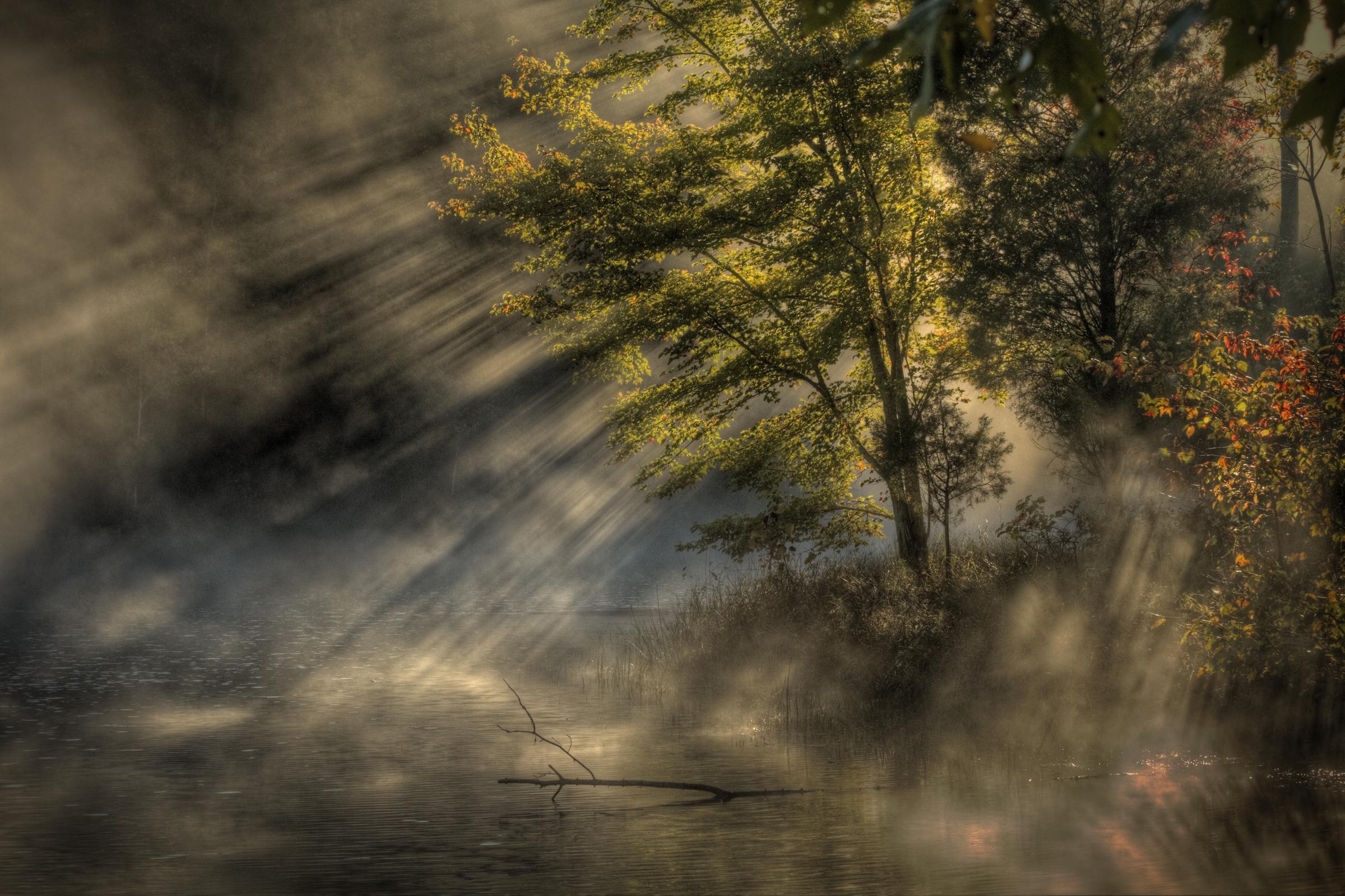 04 Apr Magic in the mist.jpg