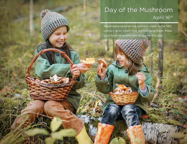 04 - Mushroom Day