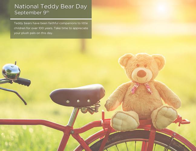 09 - Teddy Bear Day