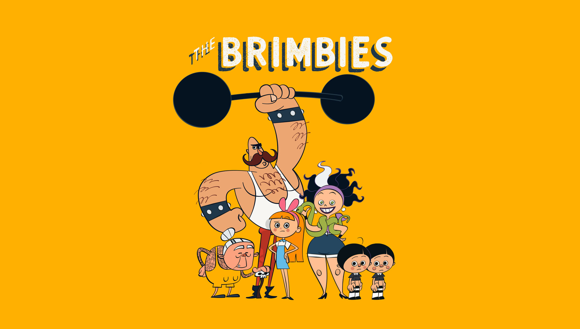 The Brimbies - Series Pitch