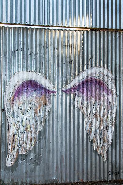 Graffiti-6484_web.jpg