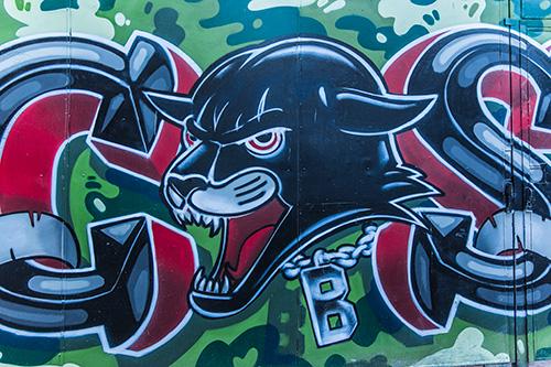 Graffiti-698_web.jpg