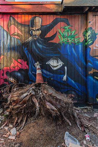Graffiti-6724_web.jpg