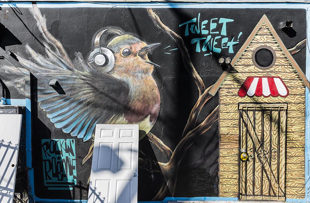 Graffiti-8514_web.jpg