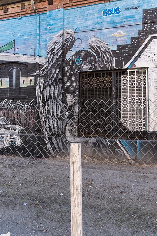 Graffiti-7525_web.jpg