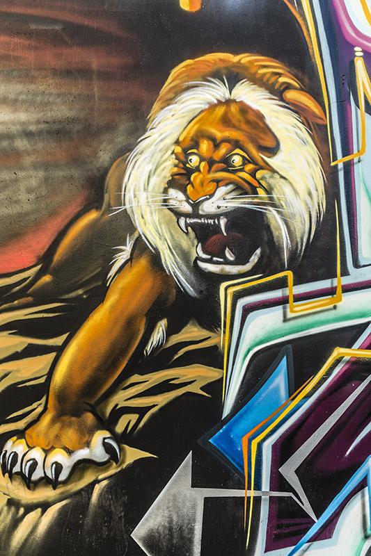 Graffiti-1687-web.jpg