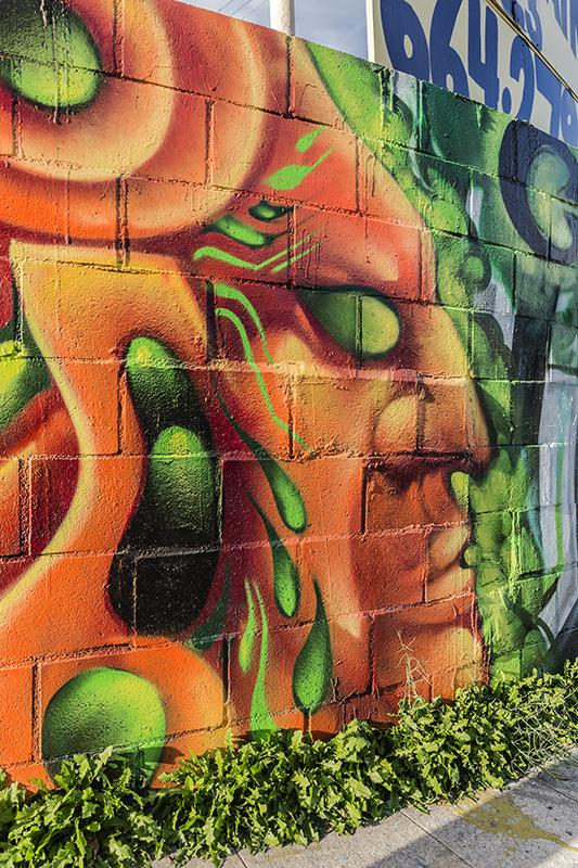 Graffiti-1723-web.jpg