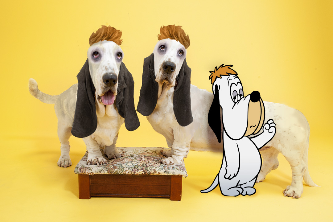 Social_Original_Droopy_PuppyDay_Droopy_04.jpg