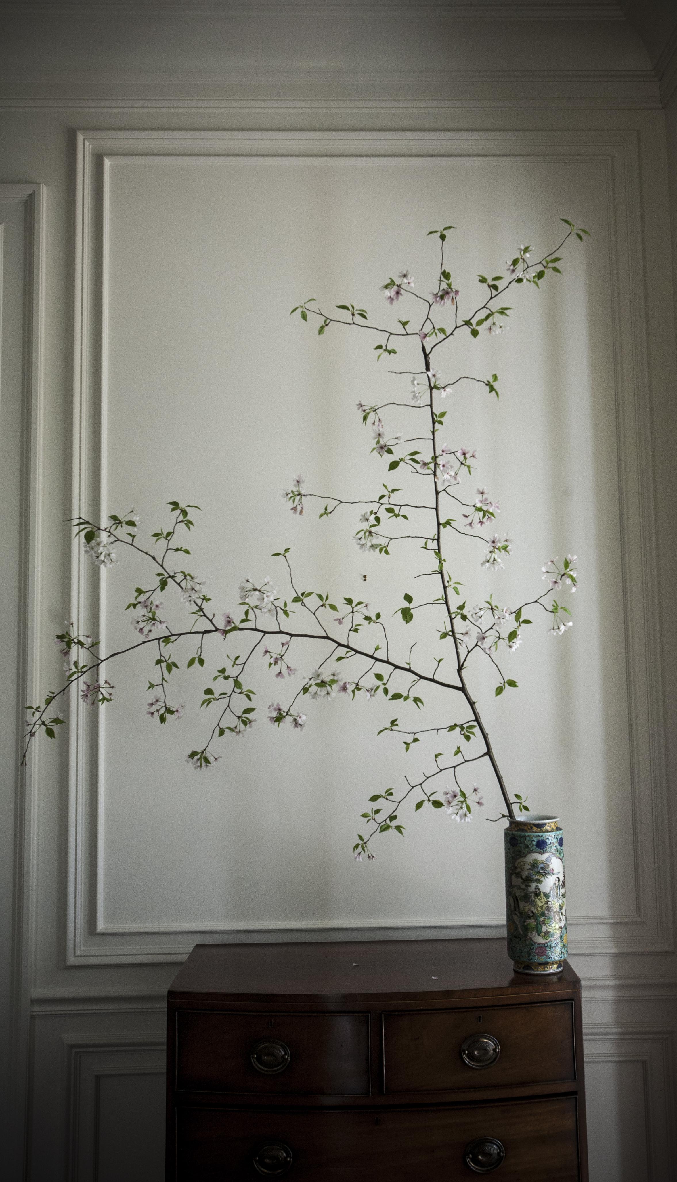 spring_14.jpg