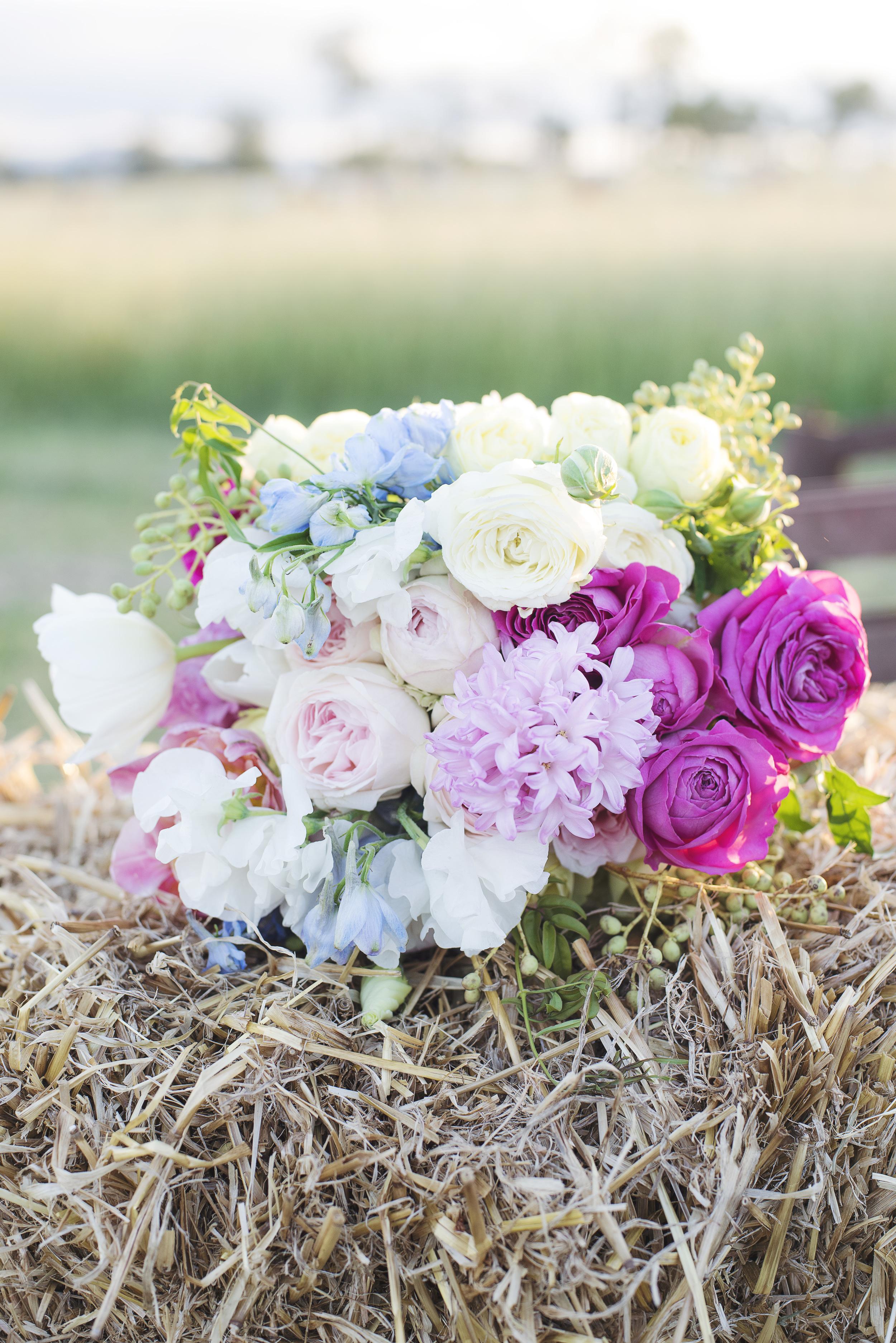 Heck wedding 2015111.jpg