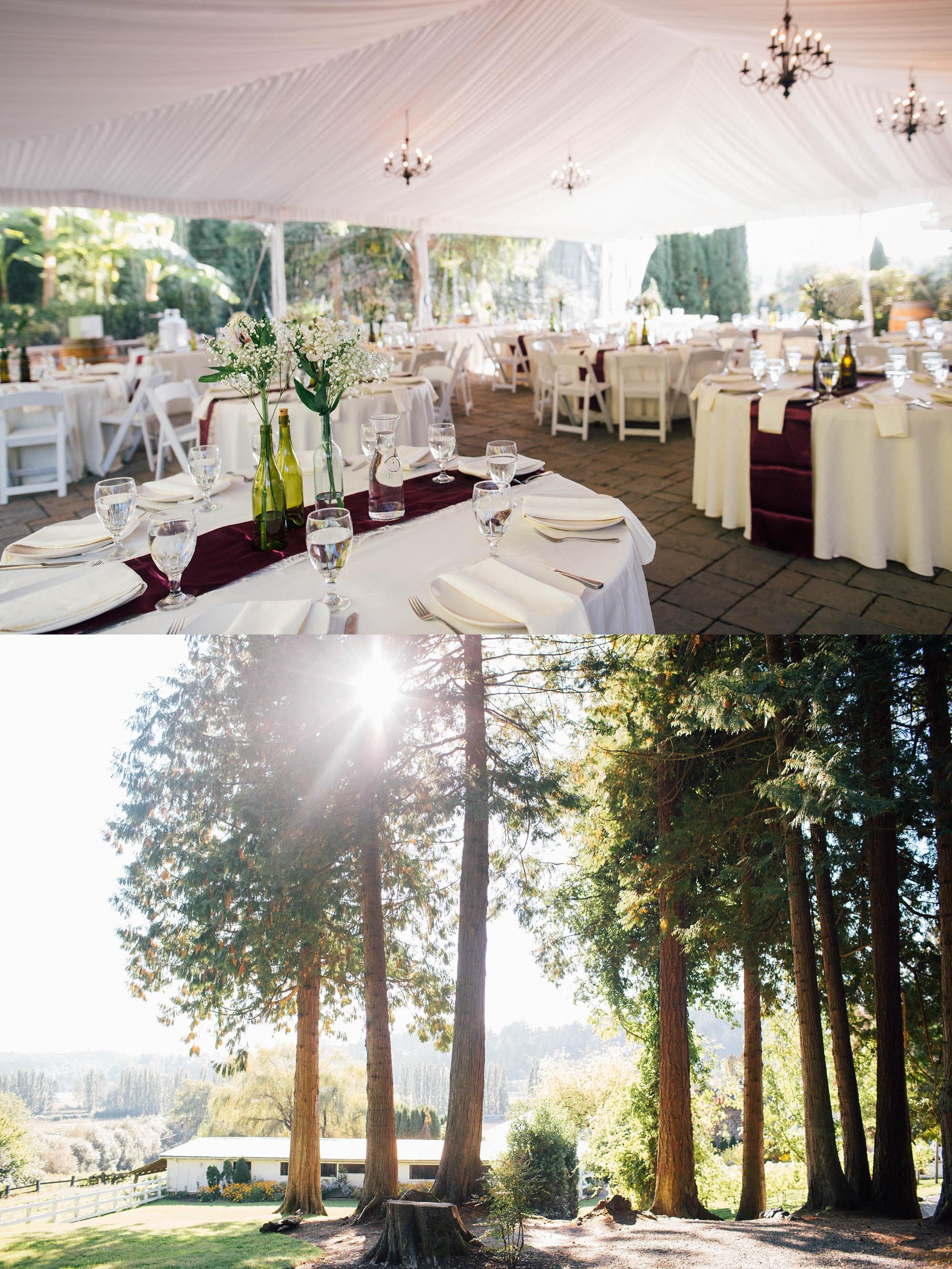 ashley_vos_seattle_ wedding_photographer_0184.jpg