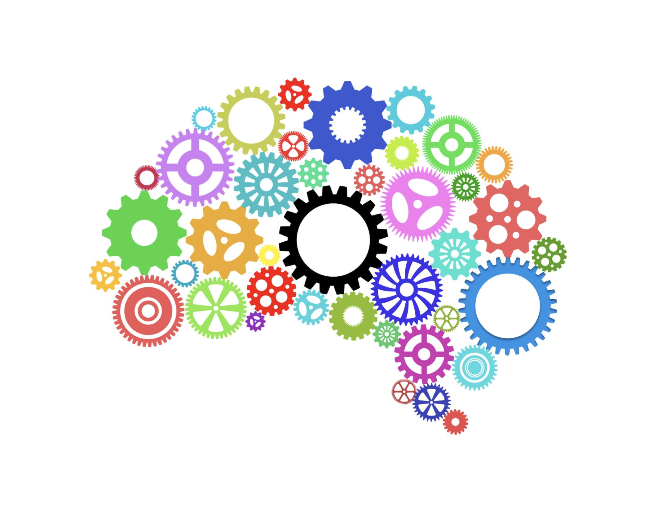 Brain Wheels.png