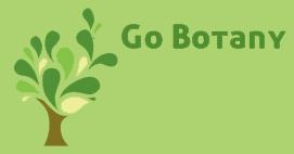 newfs_go_botany_091912.jpg