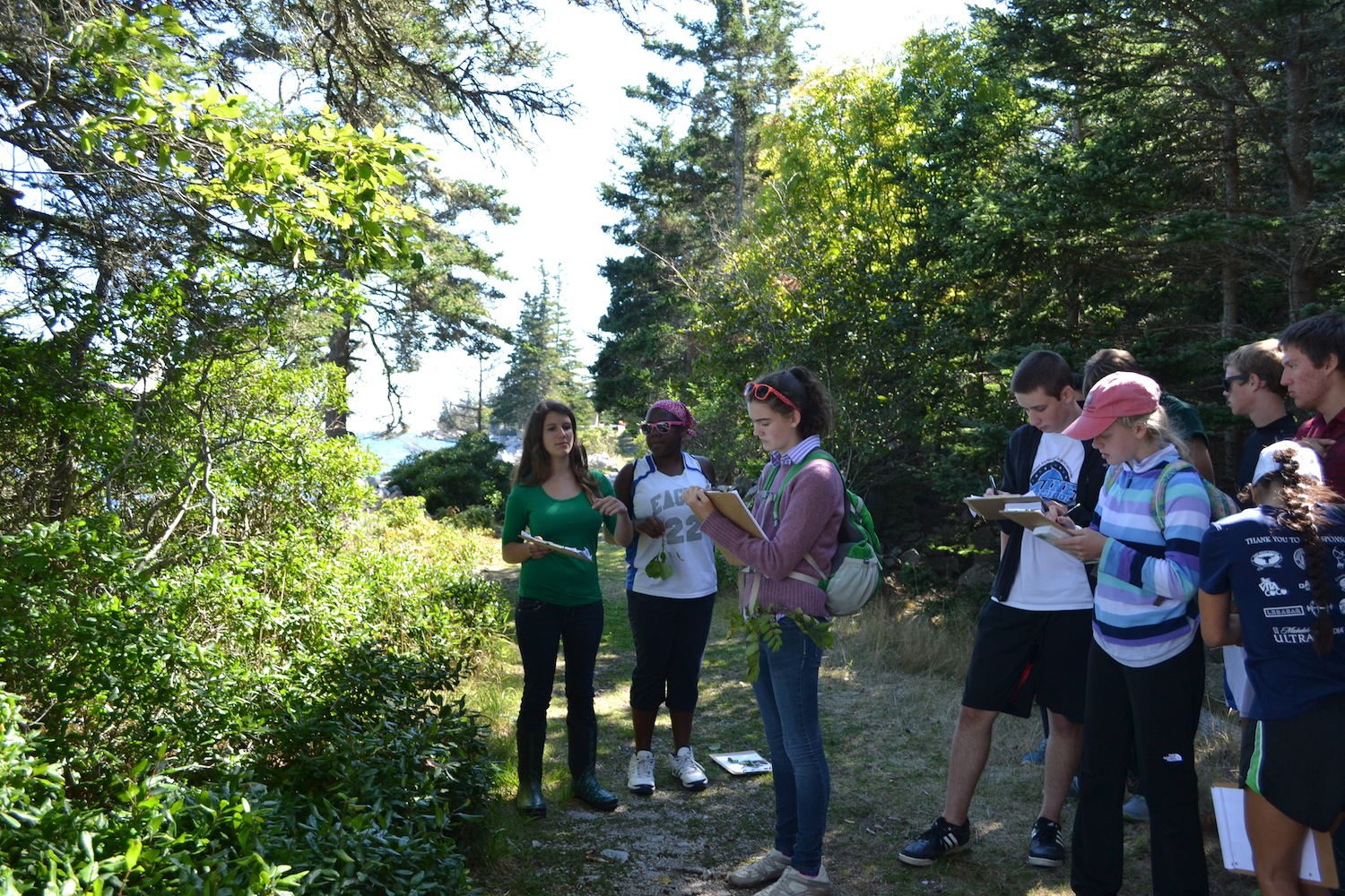 Students work on field ID to prepare for phenology monitoring.