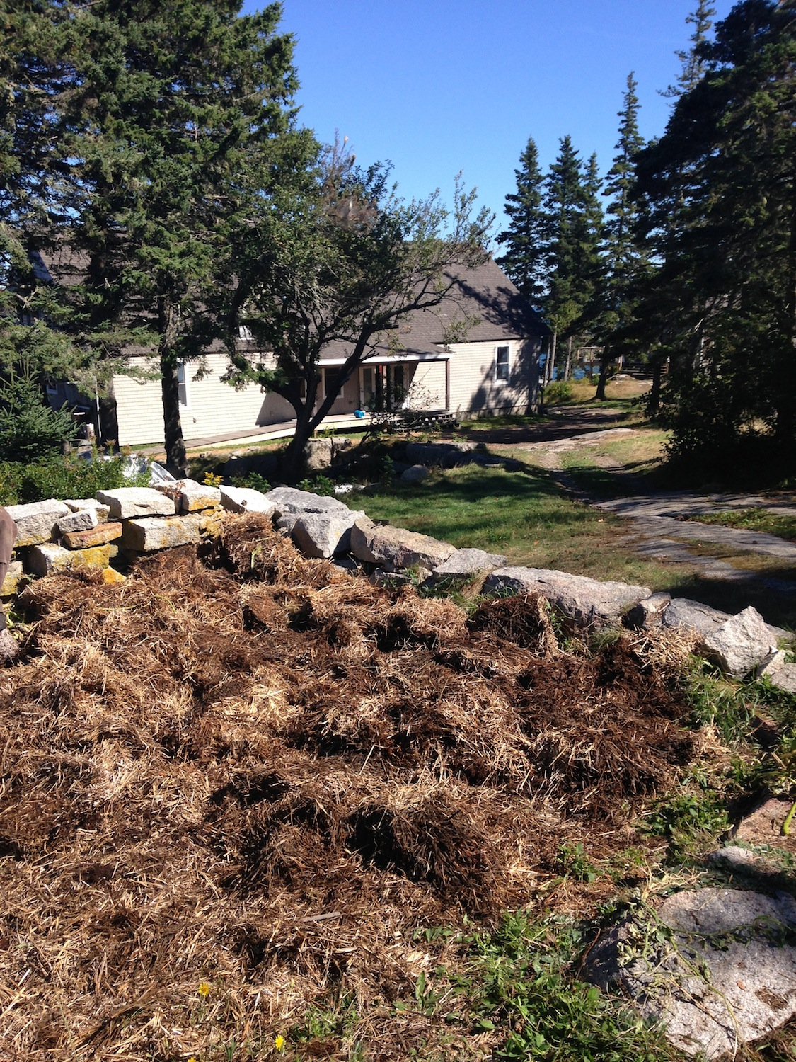 A look at our newly turned in garden