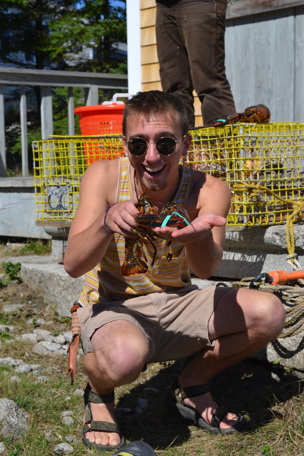A student shows off a lobster he banded.