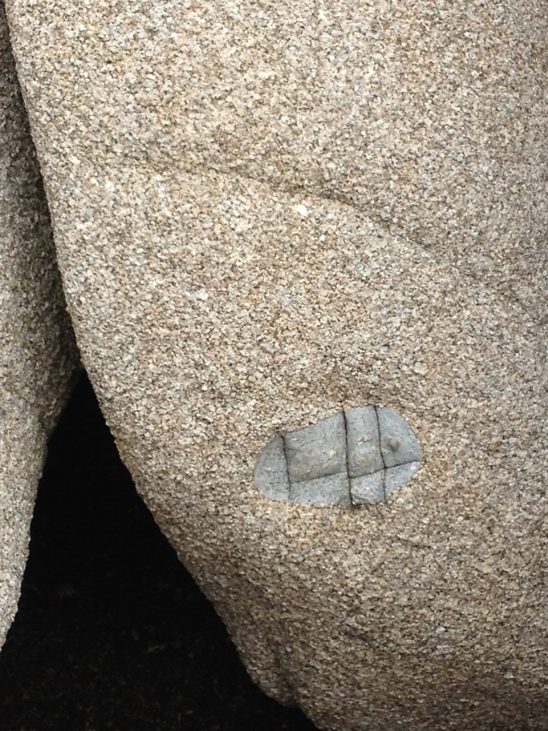 xenolith - Magma of different composition mixed with the granite to form these ubiquitous enclaves around the island