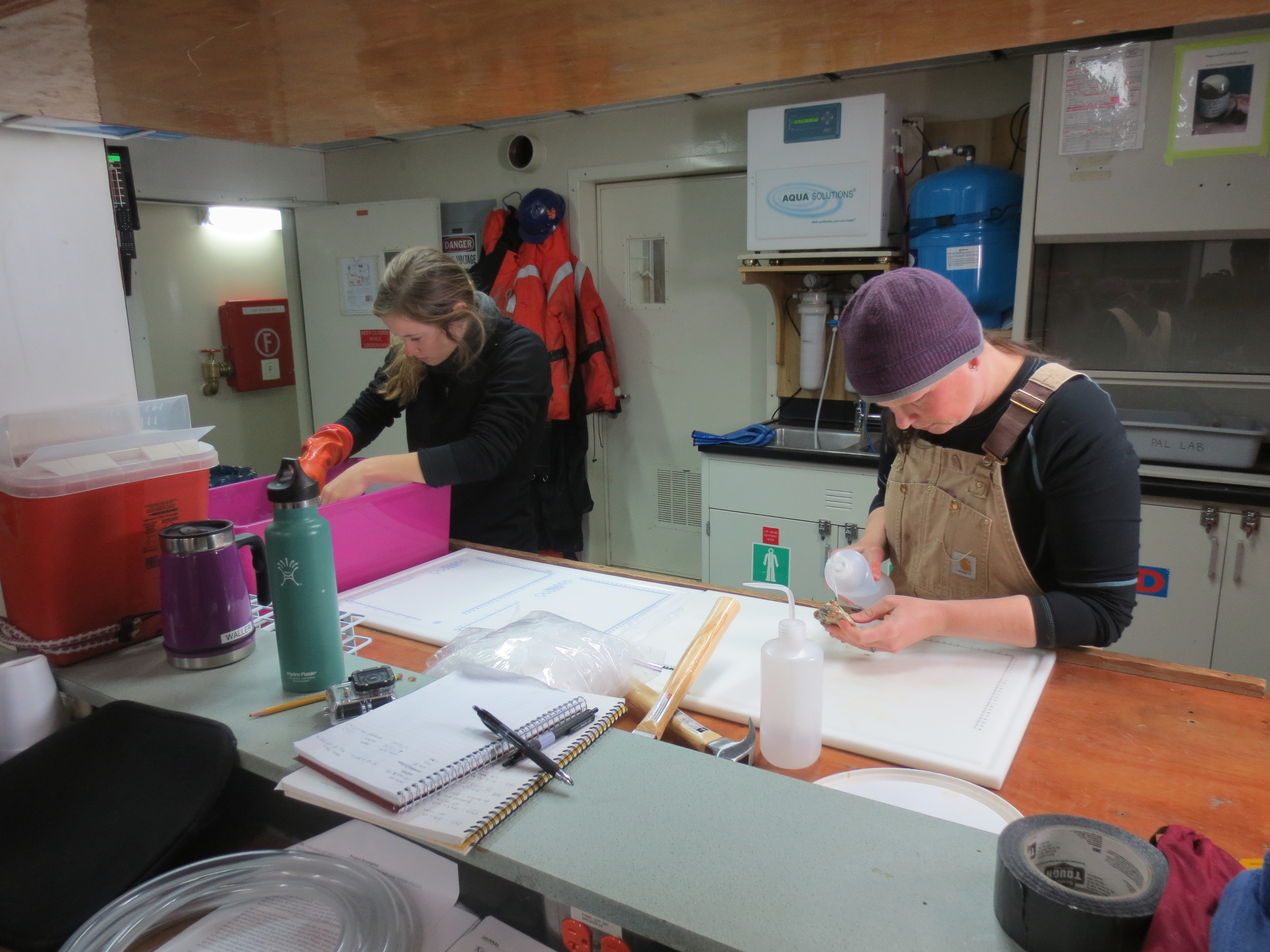 Working far into the night processing all the animal and water samples