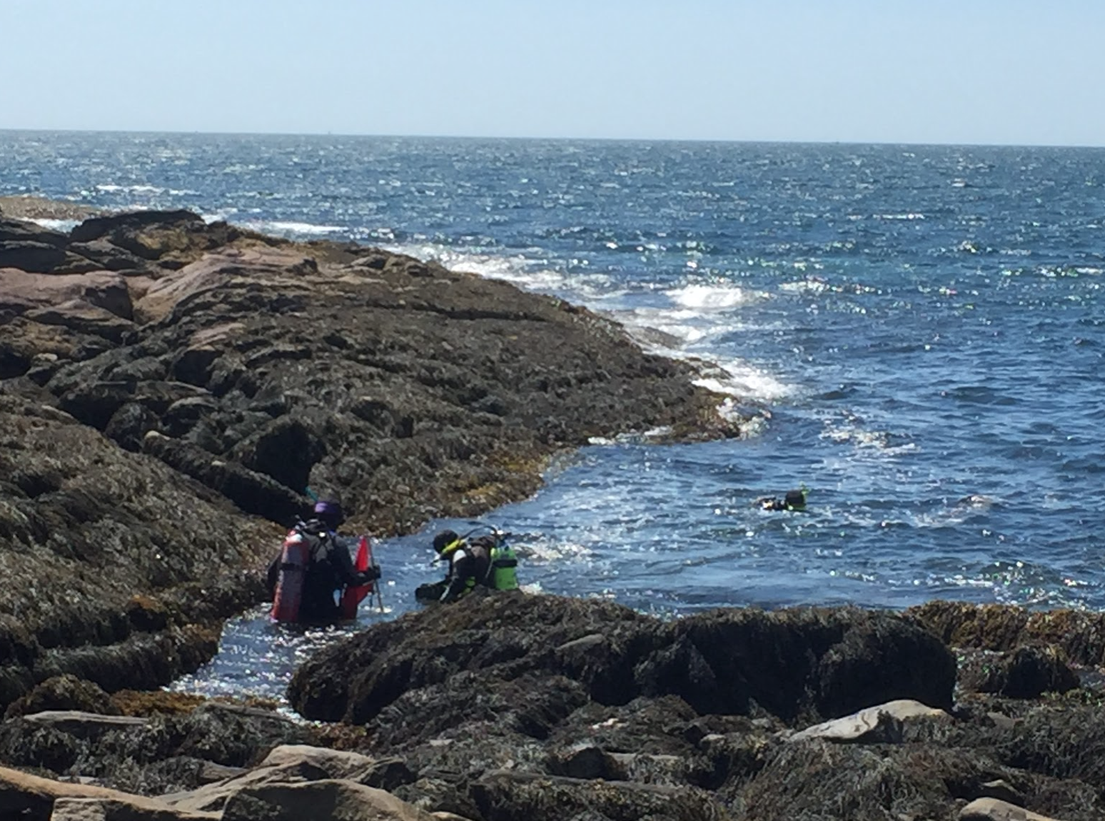 A rocky shore entry at Pemaquid Point