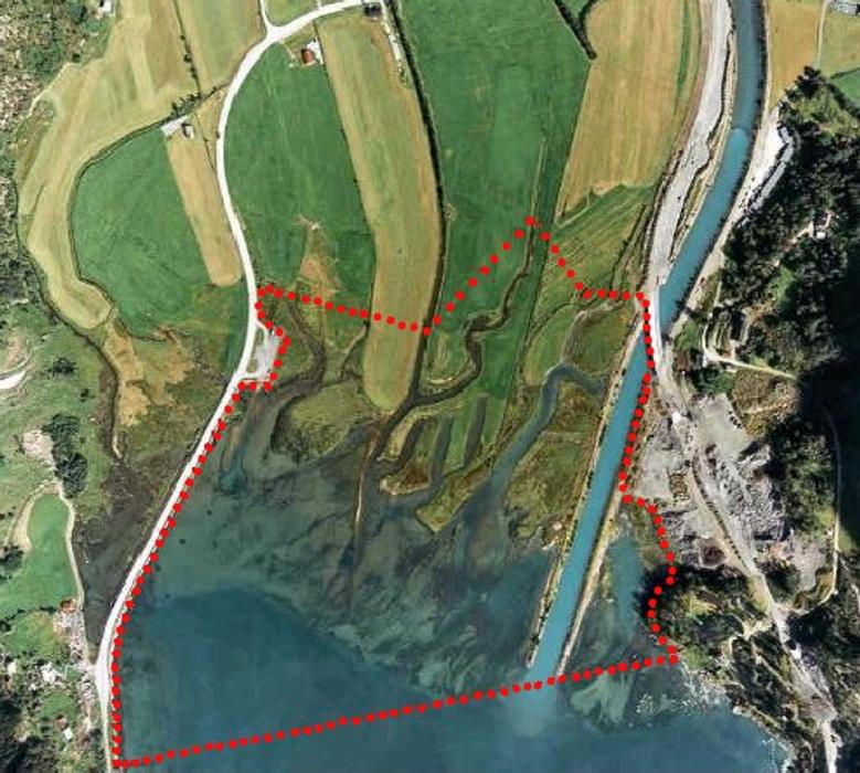 Flyfoto som viser delta si utbreiing og form. Grensa for naturreservatet er merka med raud, stipla linje (Foto: Fotonor)