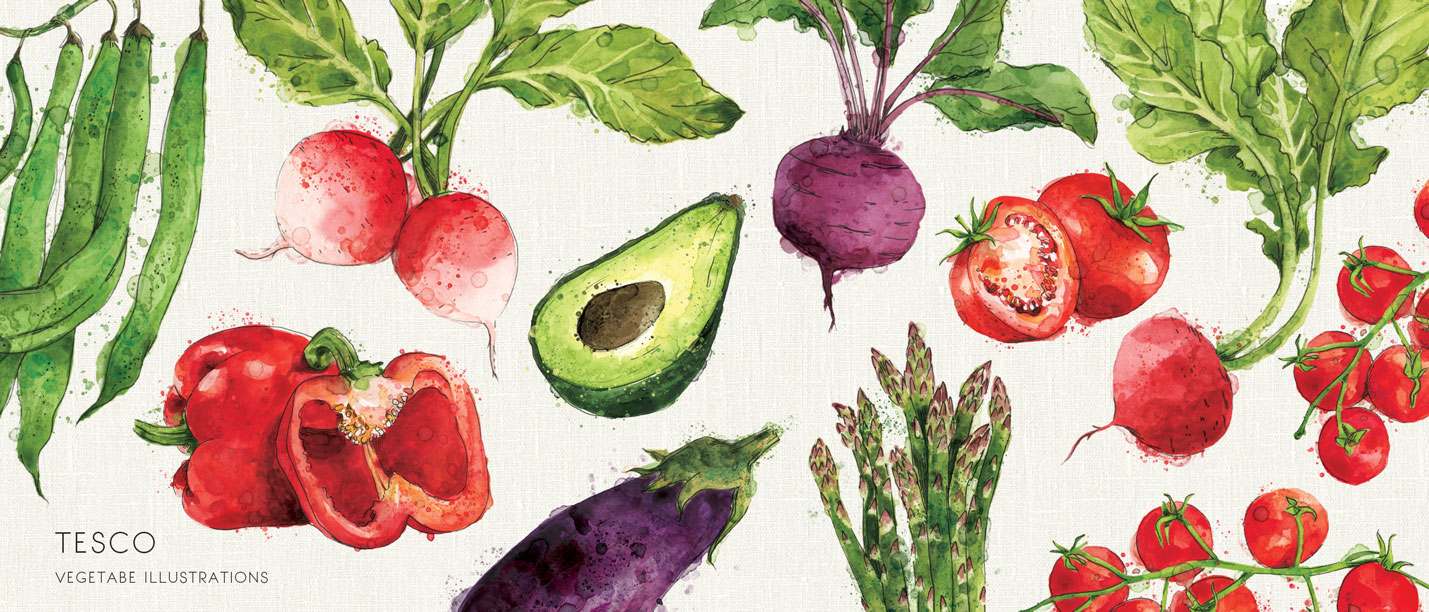 WATERCOLOUR-ILLUSTRATION-VEGETABLE-SAMARA HARDY.jpg