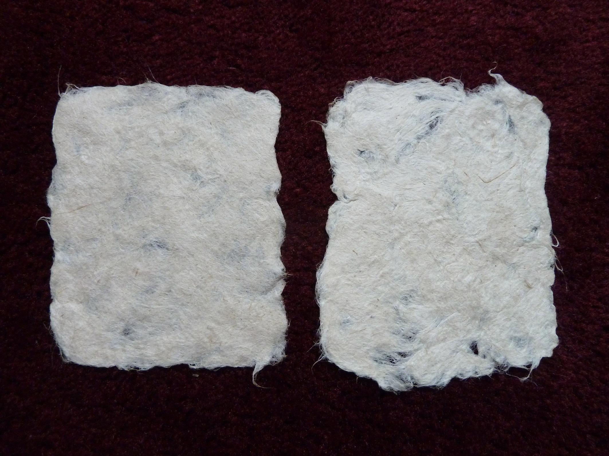 7 - Trials of flax paper.jpg