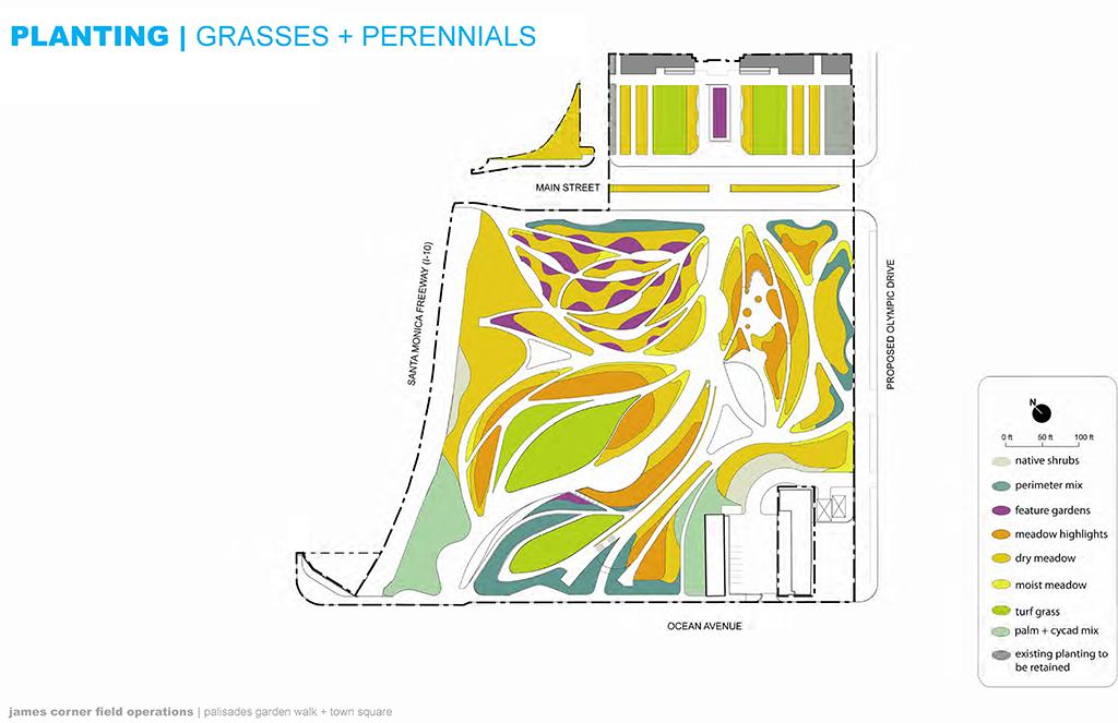 Planting Plan: Grasses & Perennials
