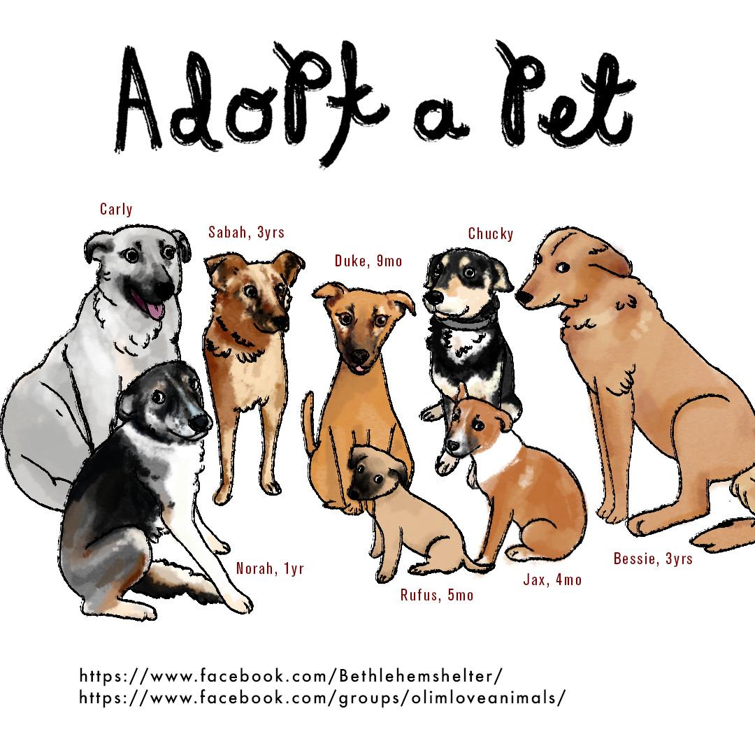 adoption.jpg