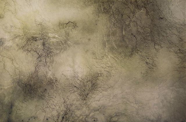 "This week is your last chance to experience Kelsey Stephenson's ""Erosion"". It's on display until Friday, July 12 at @edmontonchamber - World Trade Centre. Stephenson's prints use the language of cartography and topography to hand-trace the movement of water. These evocations of spacial, temporal, and narrative shifts can be viewed from 8:30 am - 4:30 pm today and tomorrow. (Image: Light Through Water, Kelsey Stephenson, Etching, digital, chincolle, 2017)  #TheWorksFest #Yegarts #yegartits #prints #art #edmontonart #edmontonartists"