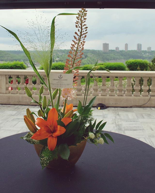 Since it finally feels like summer in Edmonton, we wanted to remember the Summer Solstice Gala!  Even though our June 14th Gala missed out on sunshine, we had gorgeous floral arrangements from @grahamlaneflorists and take-away macrons from @duchessbakeshop to distract us from the clouds gathered around the beautiful, @fairmontmac hotel. (Not to mention the delicious sweets from the culinary team at hotel mac!)