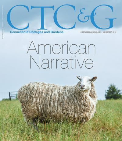CTCG-Novmeber-2015-Cover-a95367f0.jpeg