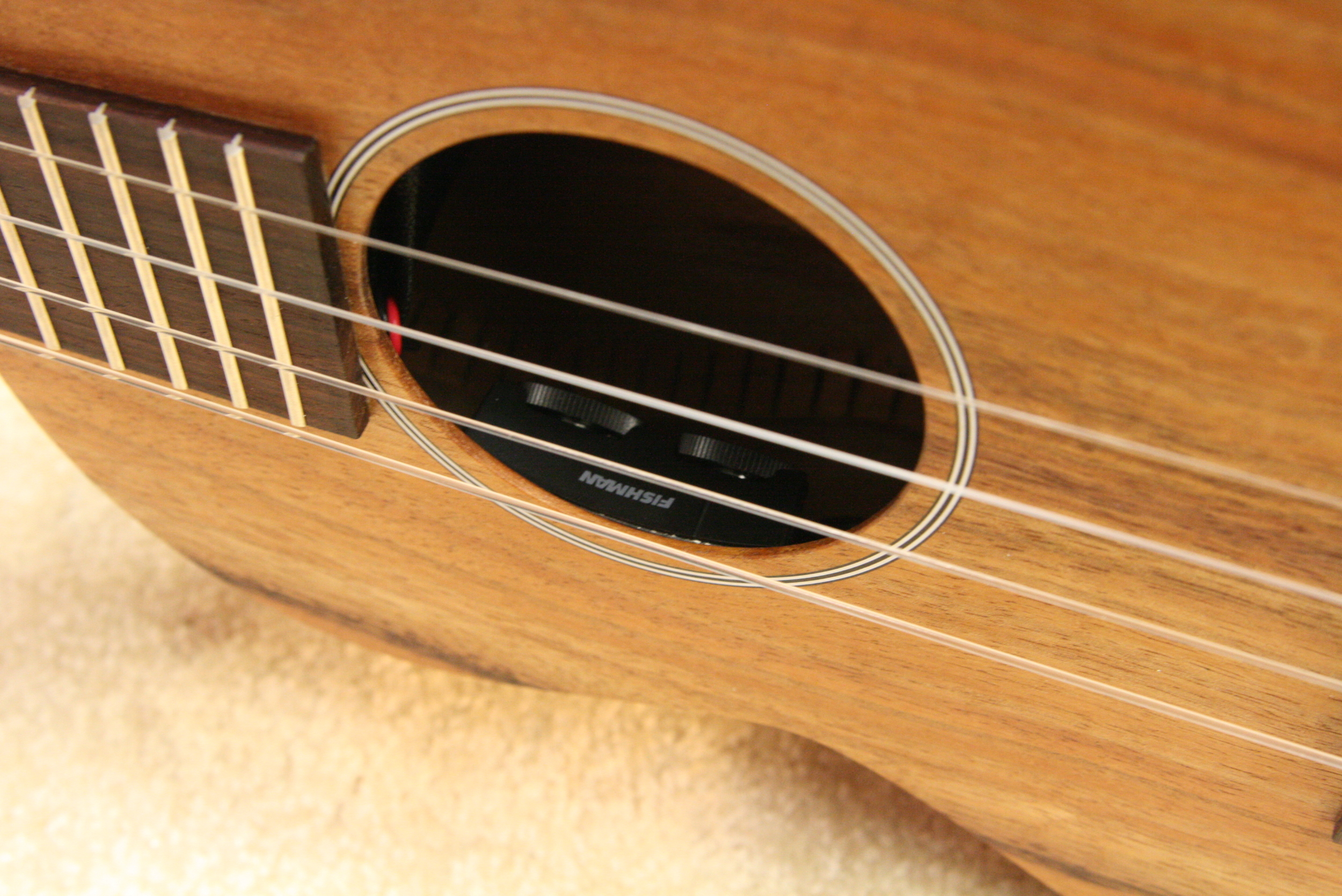 Acoustic pickup installation Seattle