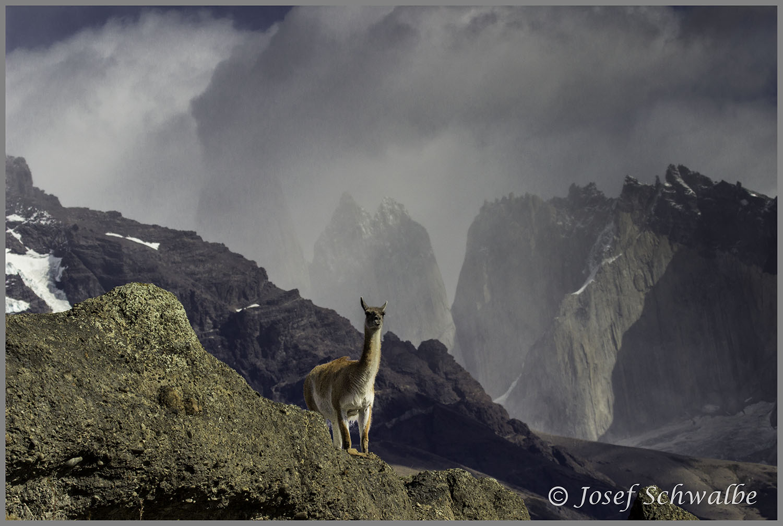 Patagonia25.jpg