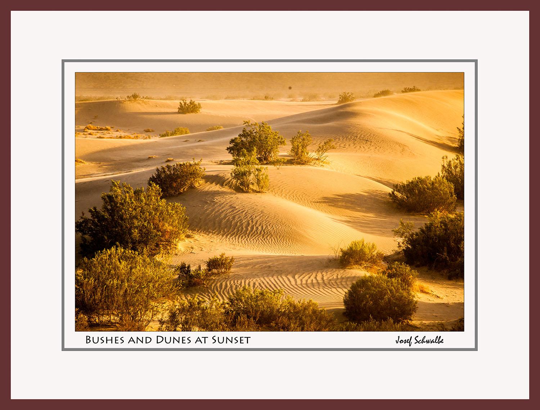 Landscape01.jpg