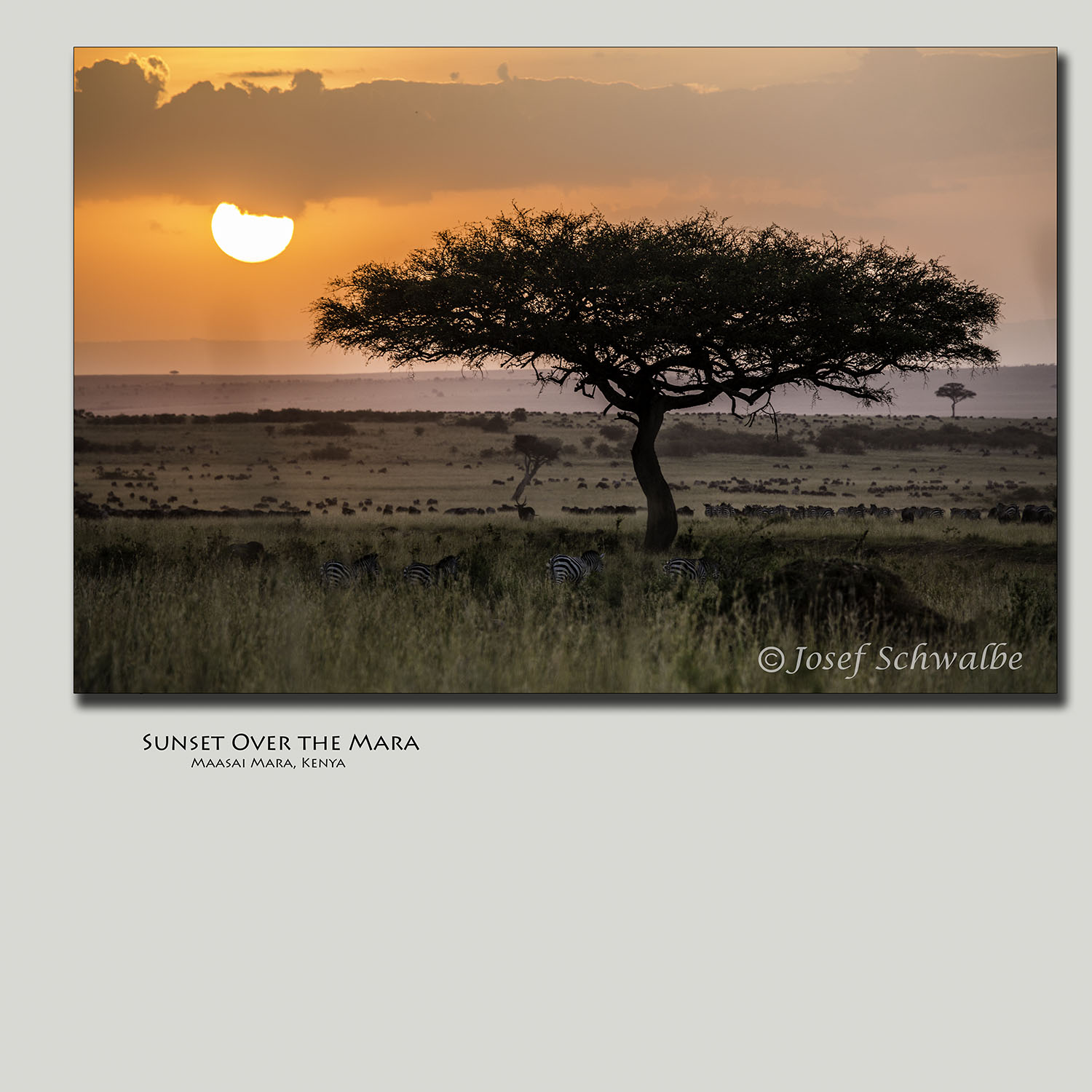 Sunset Over the Mara