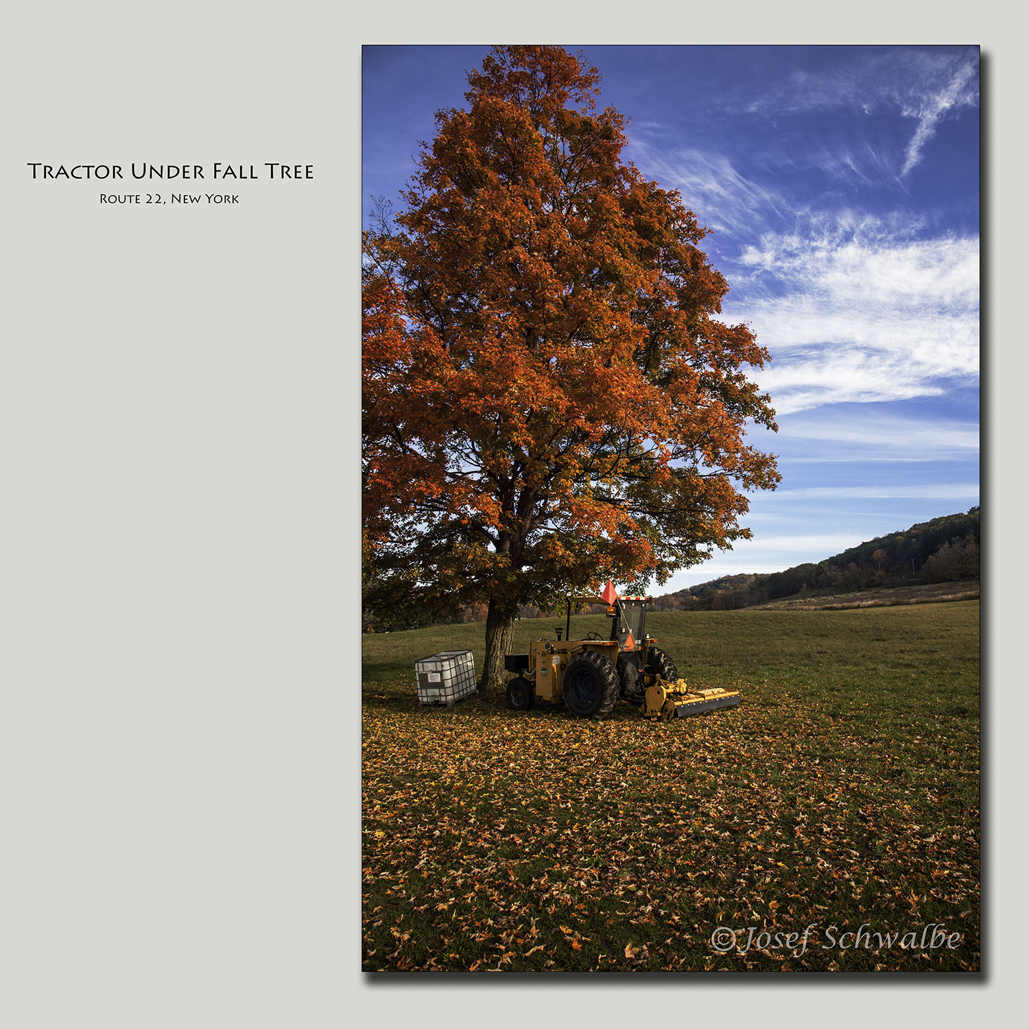 Tractor Under Fall Tree