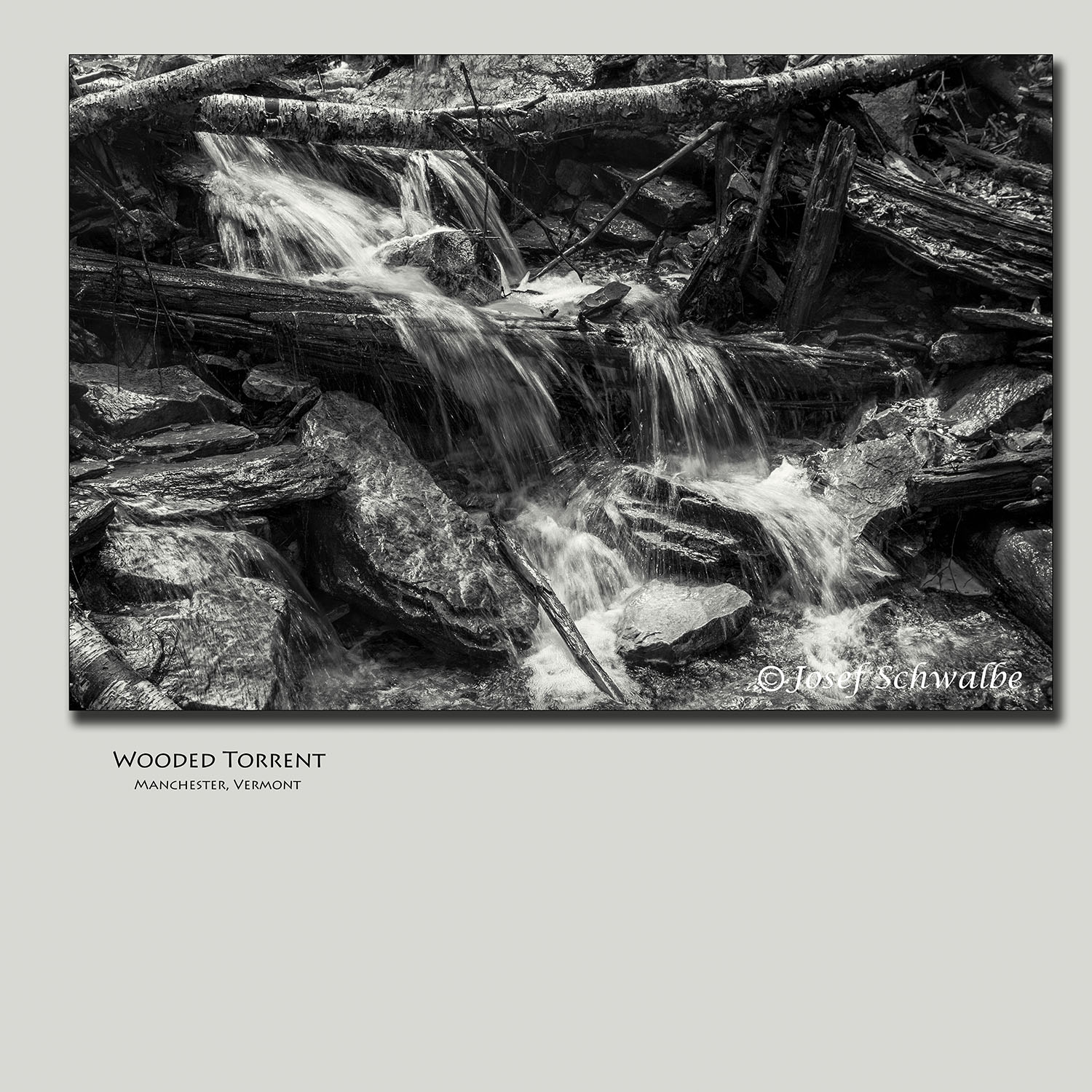 Wooded Torrent