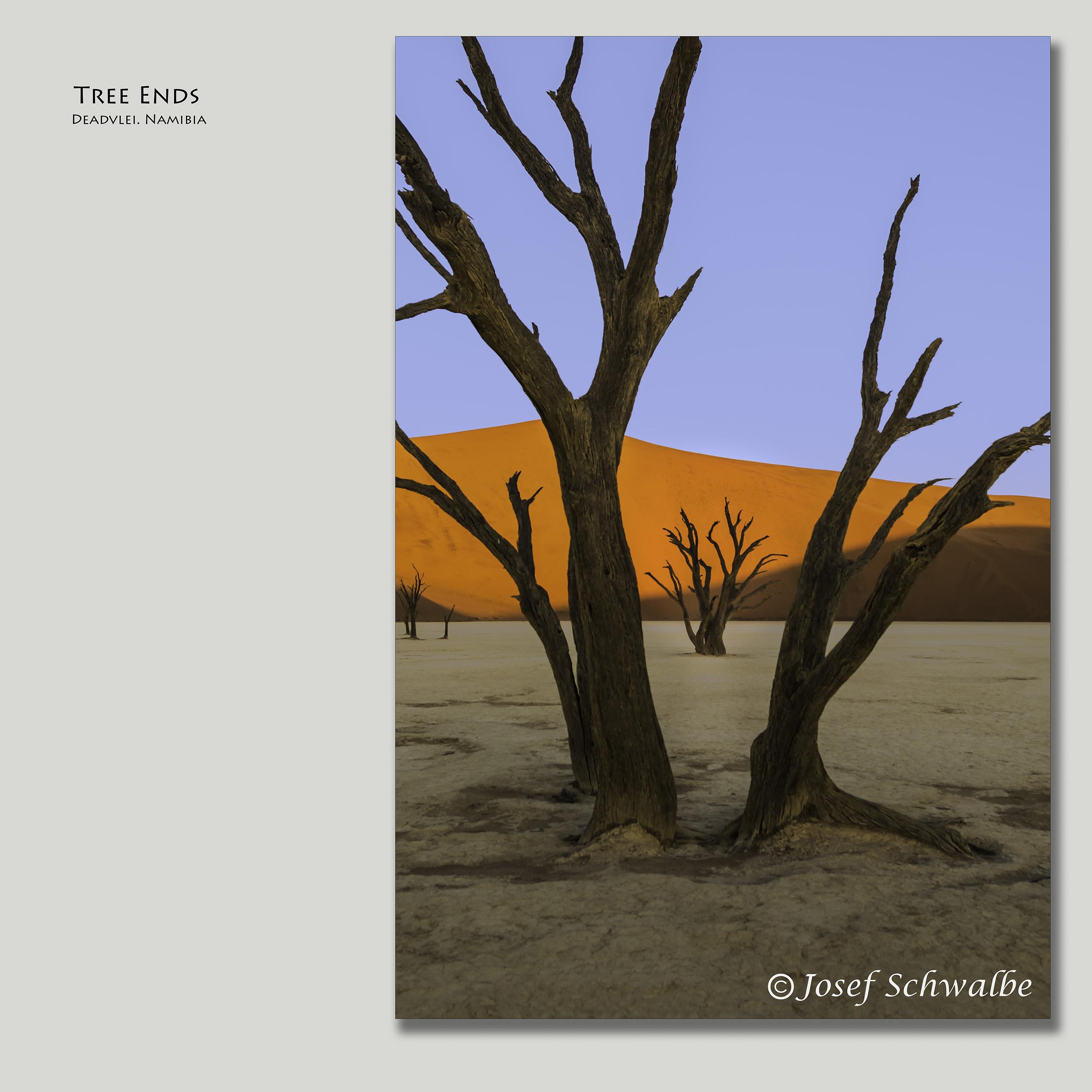 TreeEnds.jpg