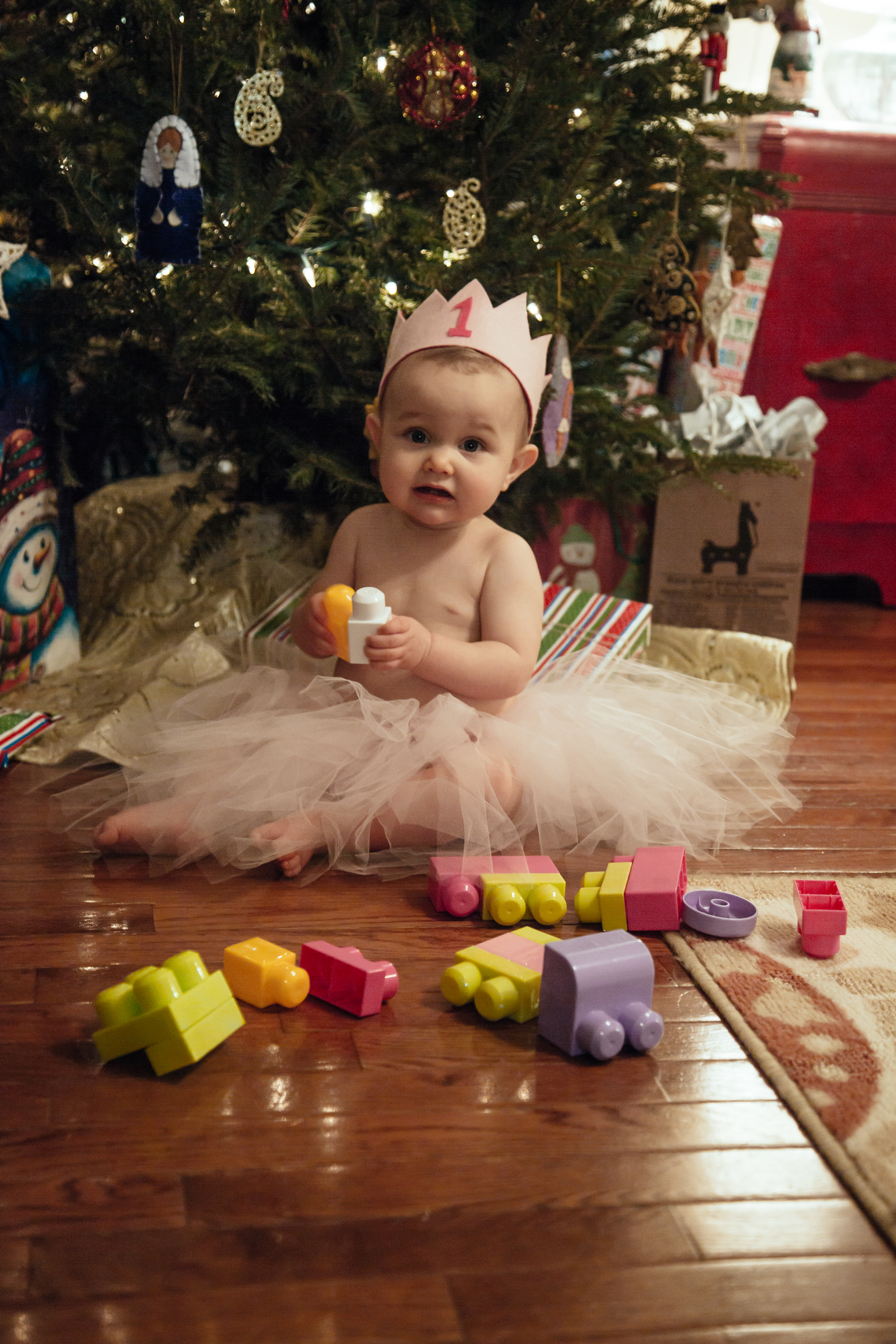 emery first birthday tutu and tree-39.jpg
