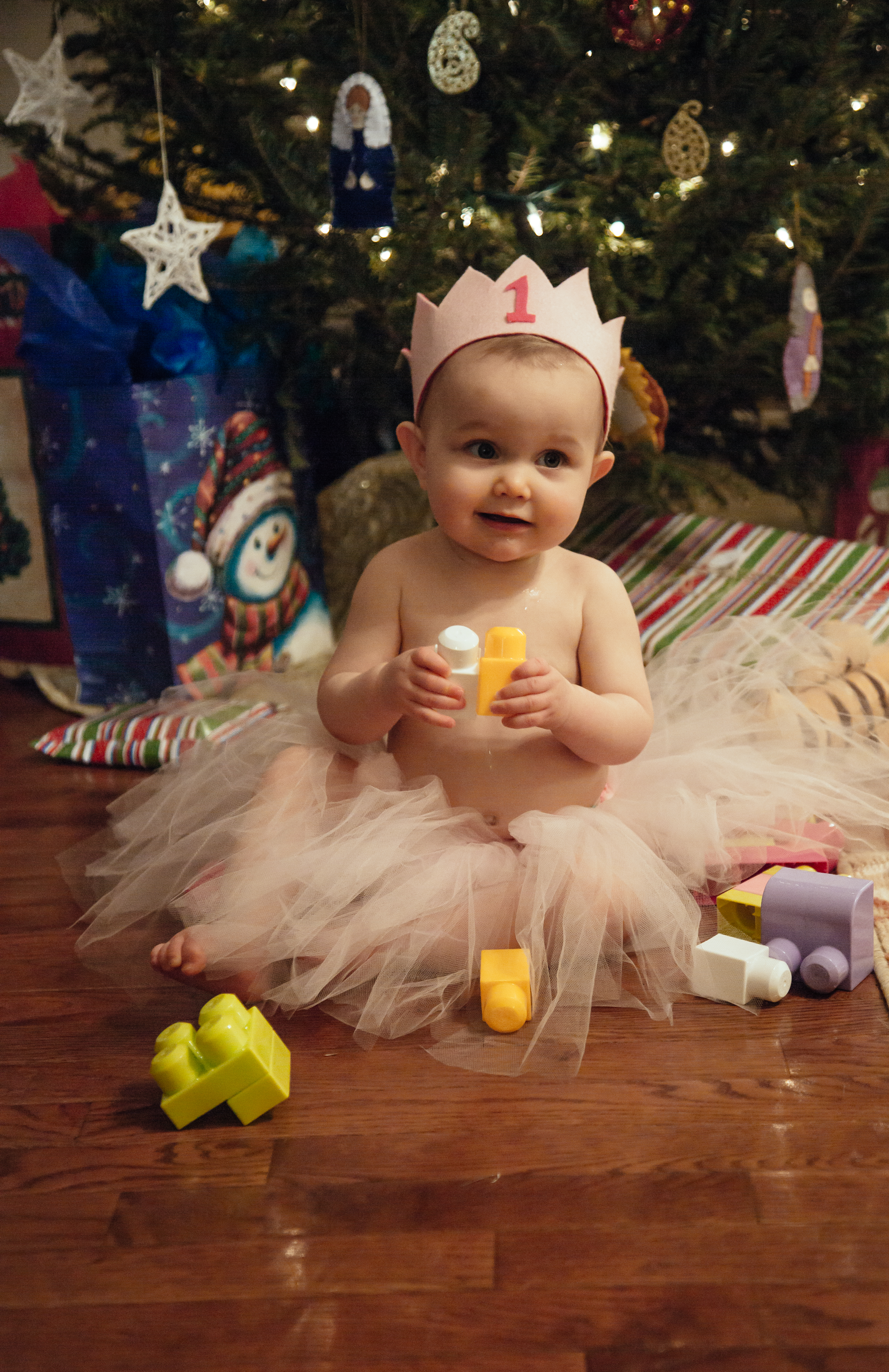 emery first birthday tutu and tree-44.jpg