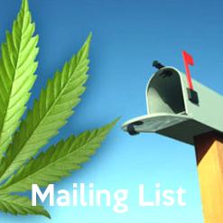 mailboxicon.jpg