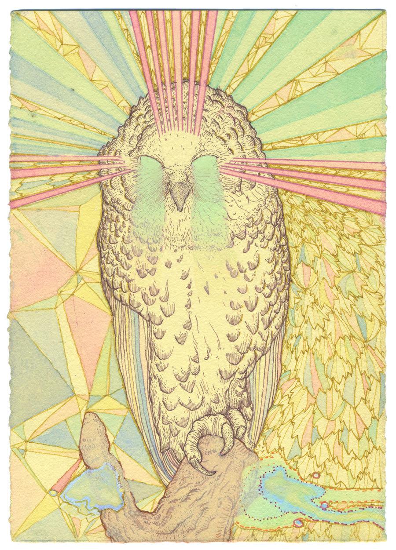 owl-2-copyweb.jpg