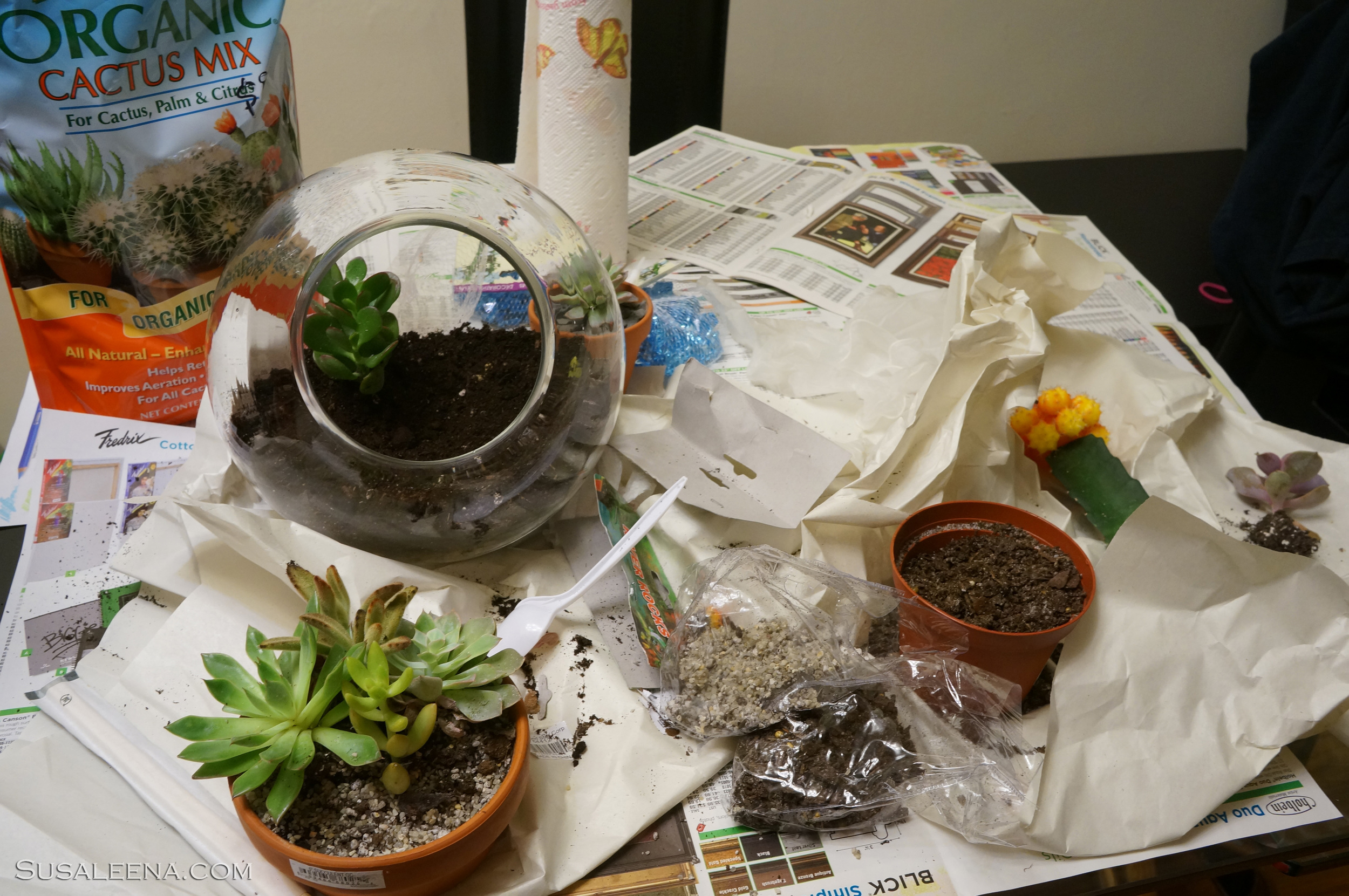 Filling up the glass globe. Don't worry about the mess..it will be ugly and messy until everything is planted and cleaned.