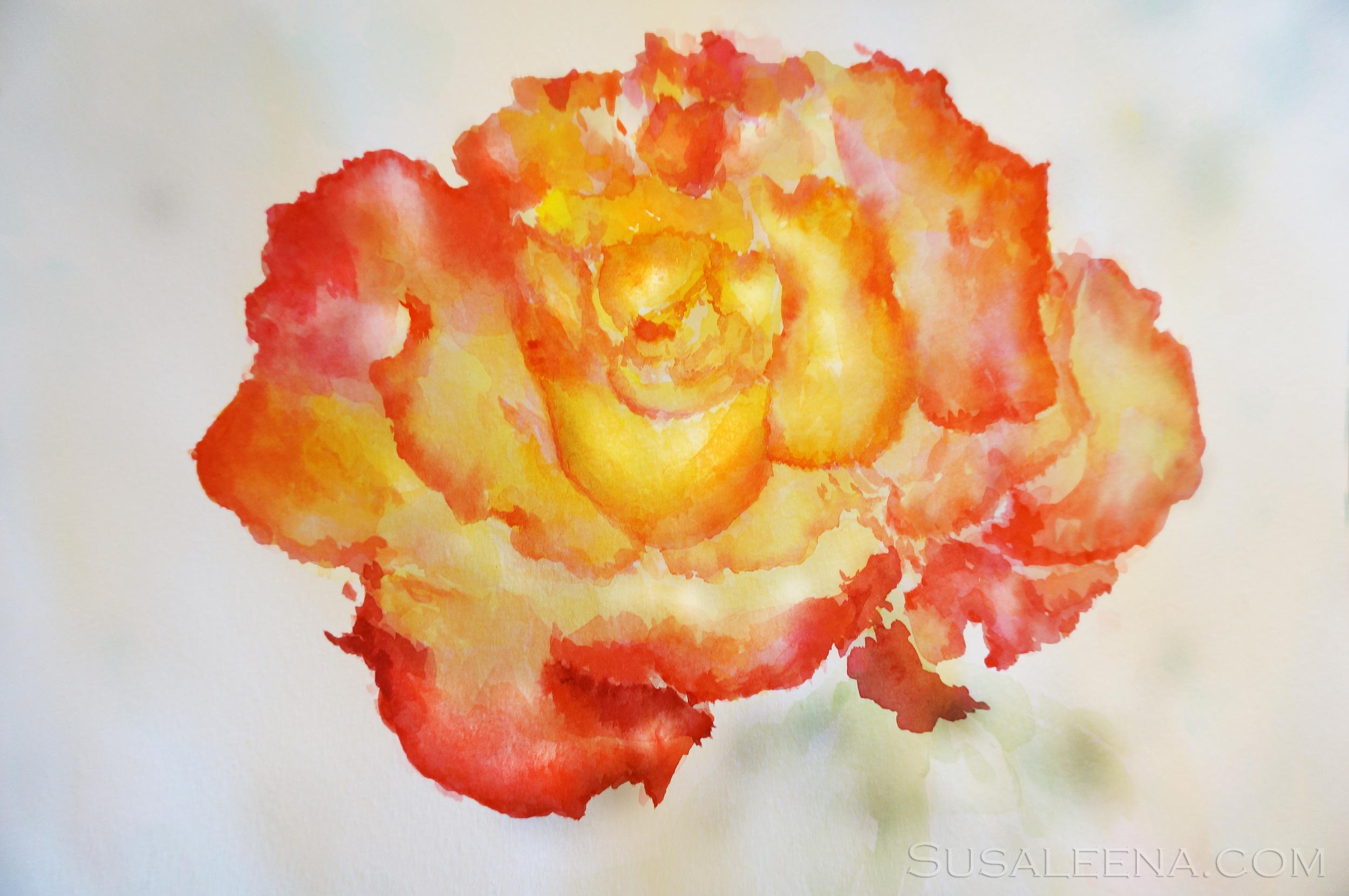 """""""Fire Flower"""""""