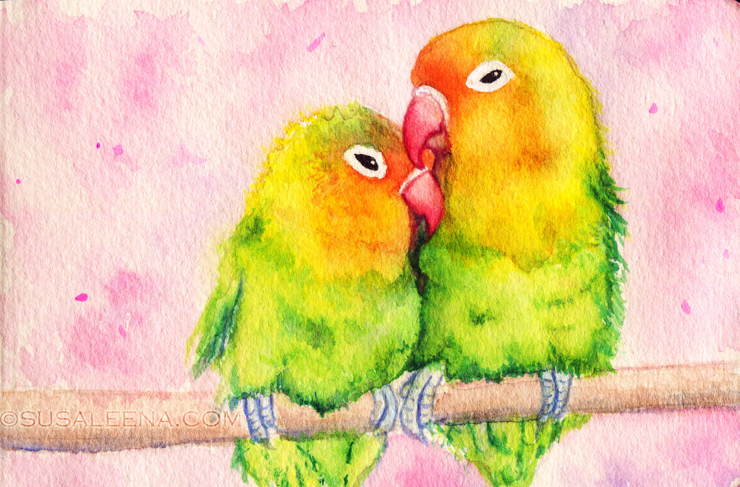 Here's a closeup of the two lovebirds