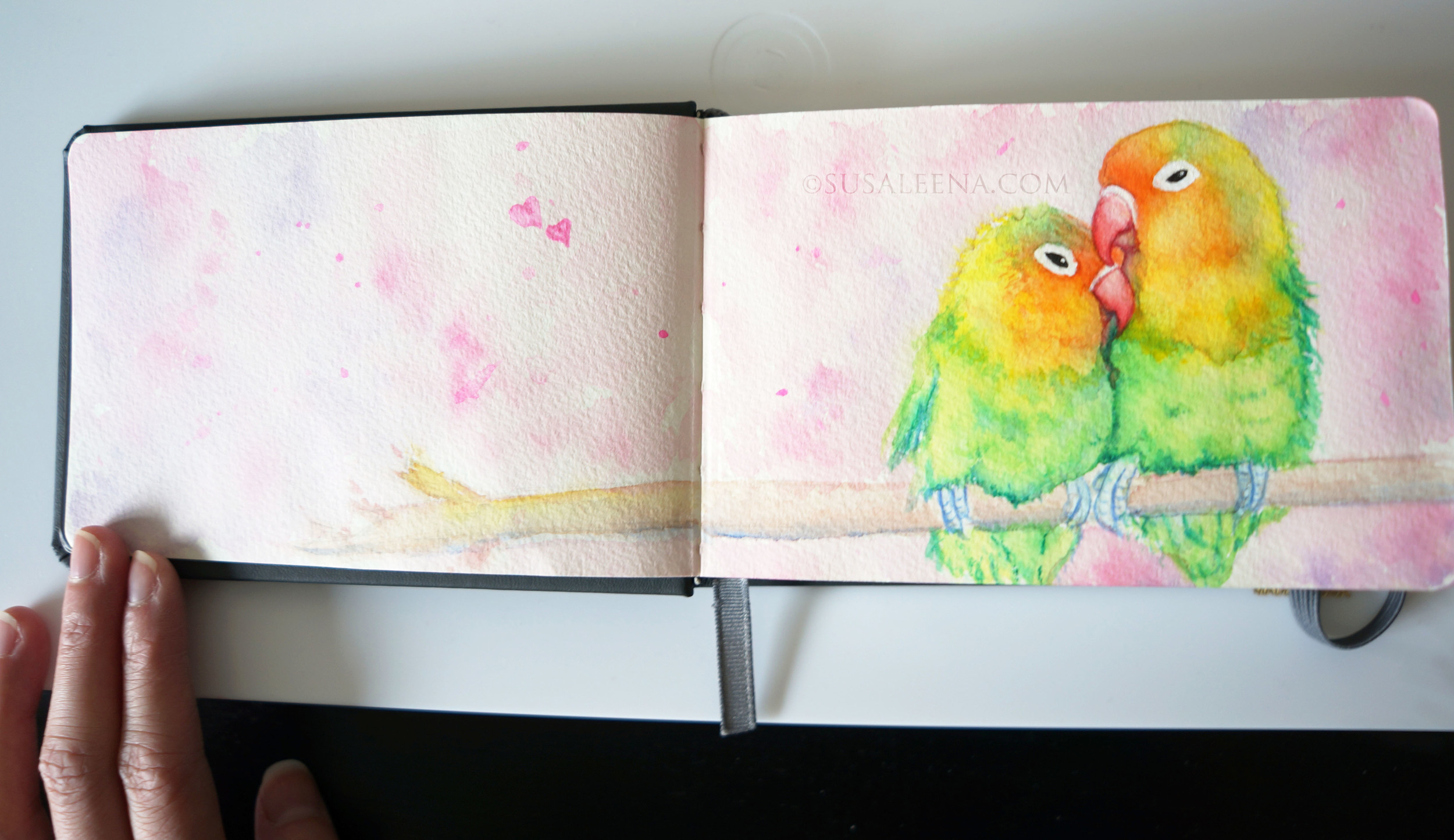 The background is much lighter with better contrast against the lovebirds.