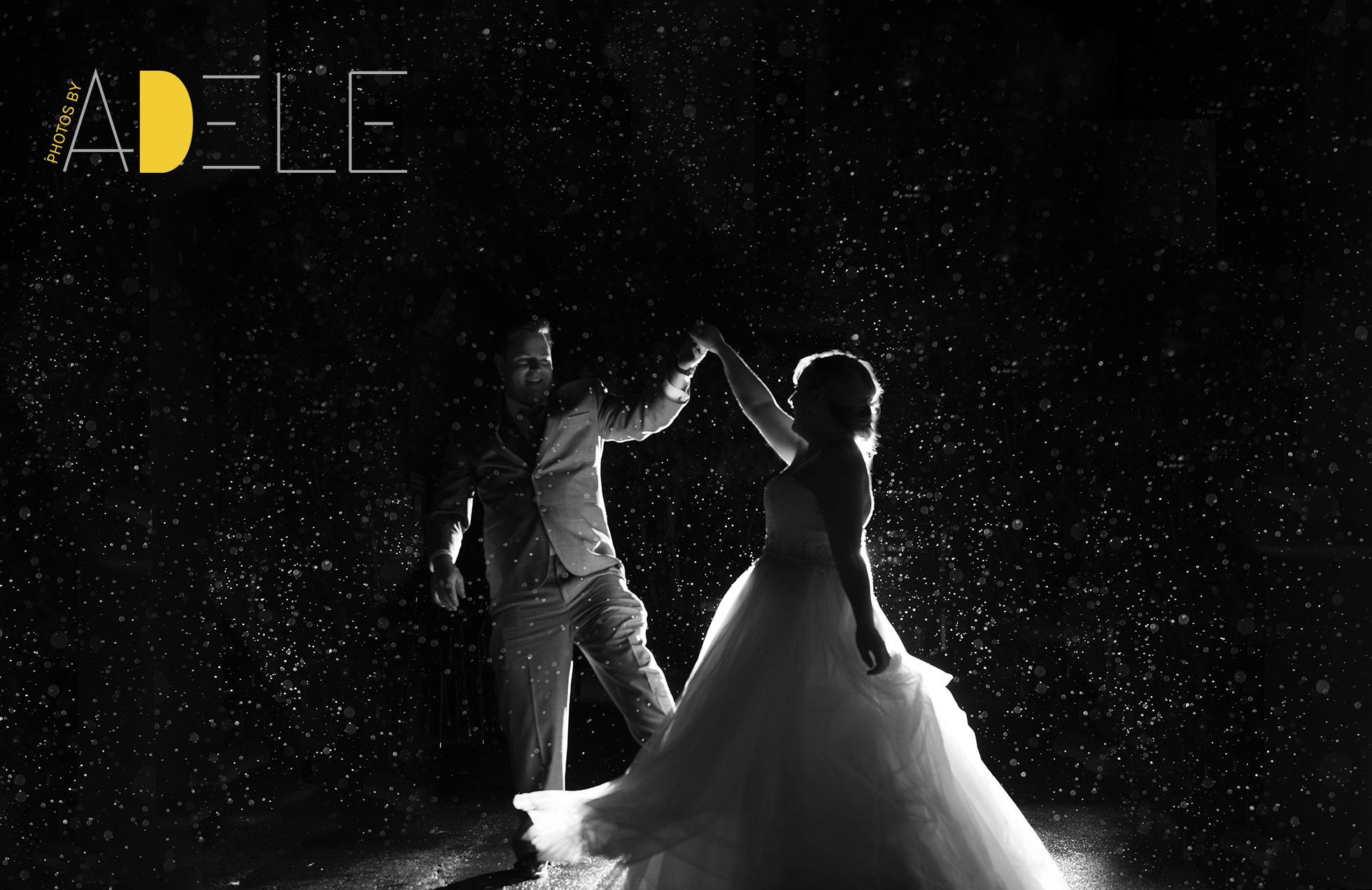 Calgary Wedding Photographer, why I love a good Dance Floor