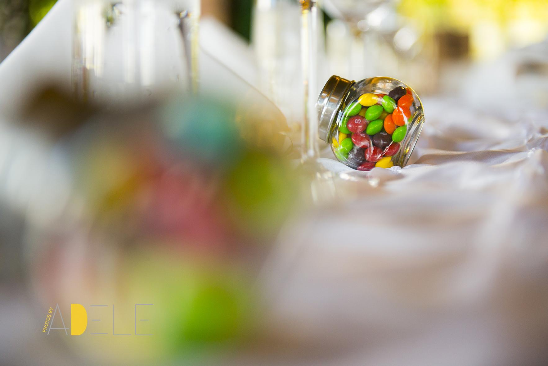 Calgary Wedding Photographer; Photos by Adele's Take On Wedding