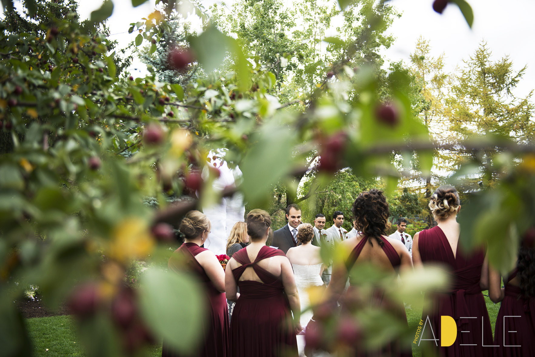 Calgary Wedding Photographer; Photos By Adele's Take On Fall Wed