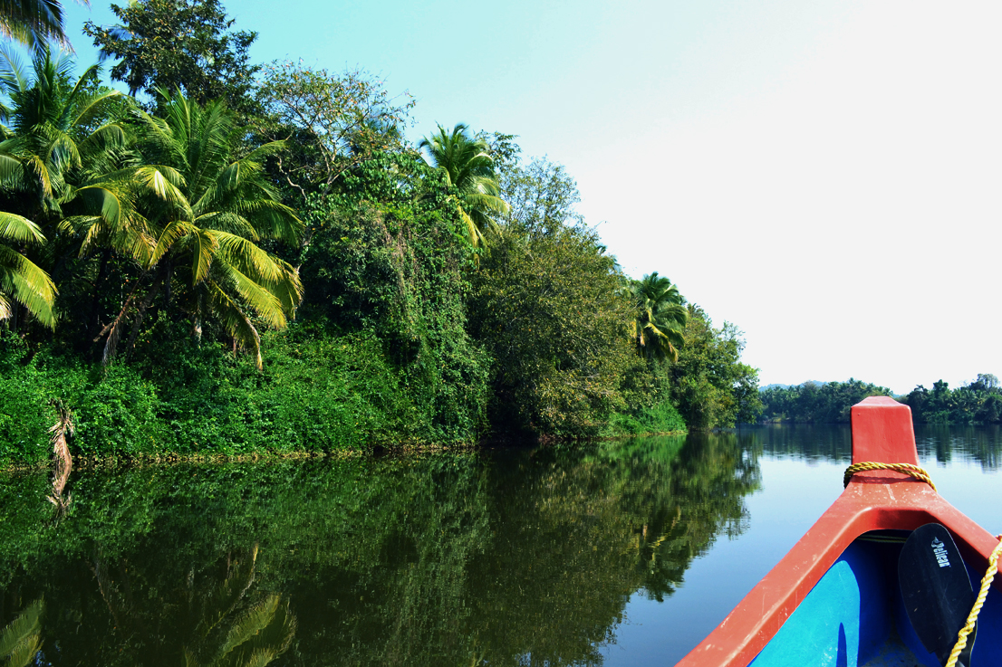WEAVING INTO THE BACKWATERS OF TARKALI RIVER WHERE ALL THAT REMAINS IS YOU, AND THE JUNGLE AROUND